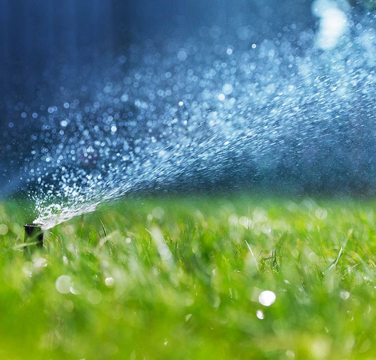 Water Sprinkler on a green Lawn