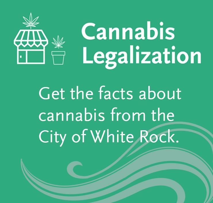 Cannabis-legalization-news-flash