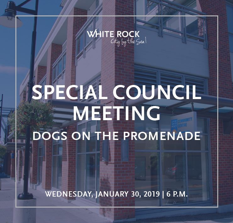 Special Council Meeting - January 30, 2019