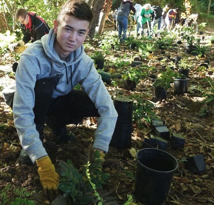 The Lower Mainland Green Team - Volunteer removing invasive plants