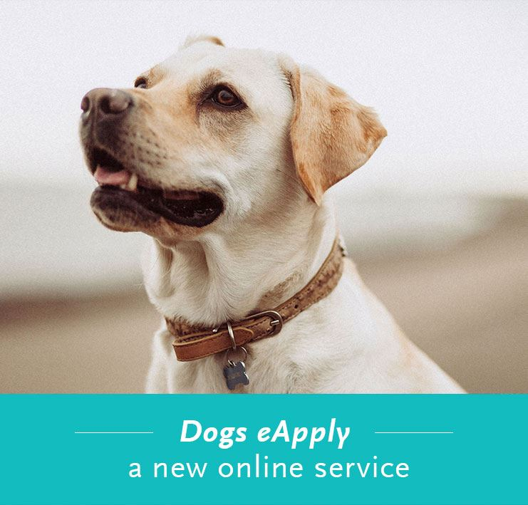 Dogs eApply - a new online service