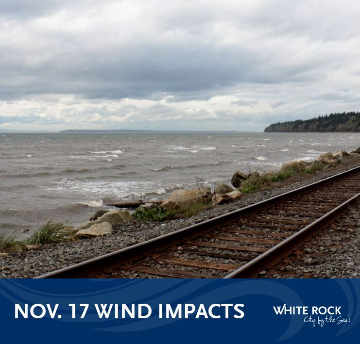 Wind impacts in White Rock - Nov. 17, 2020